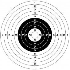 10 Paper Targets 14cm x 14cm - To Fit Metal BB Gun Target